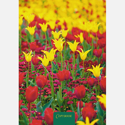 Цветы. Краски лета (А4, 80 л.)