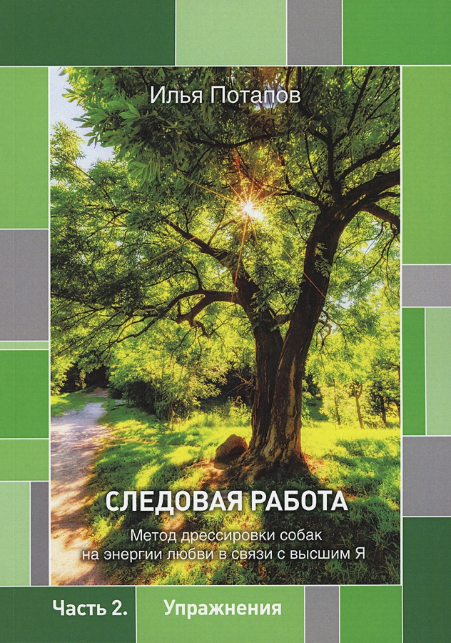 Потапов И.П. - Следовая работа обложка книги