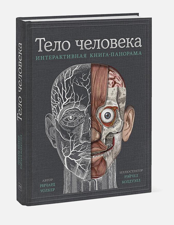 Ричард Уолкер, Рейчел Колдуэлл - Тело человека. Интерактивная книга-панорама обложка книги
