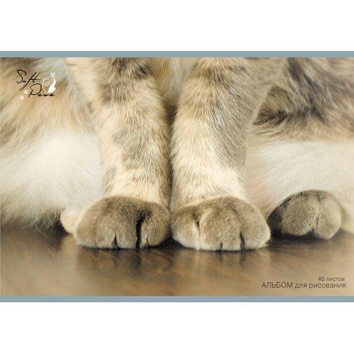 Кошачьи лапки (скрепка, 40л.)